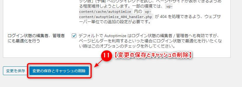 Autoptimize10